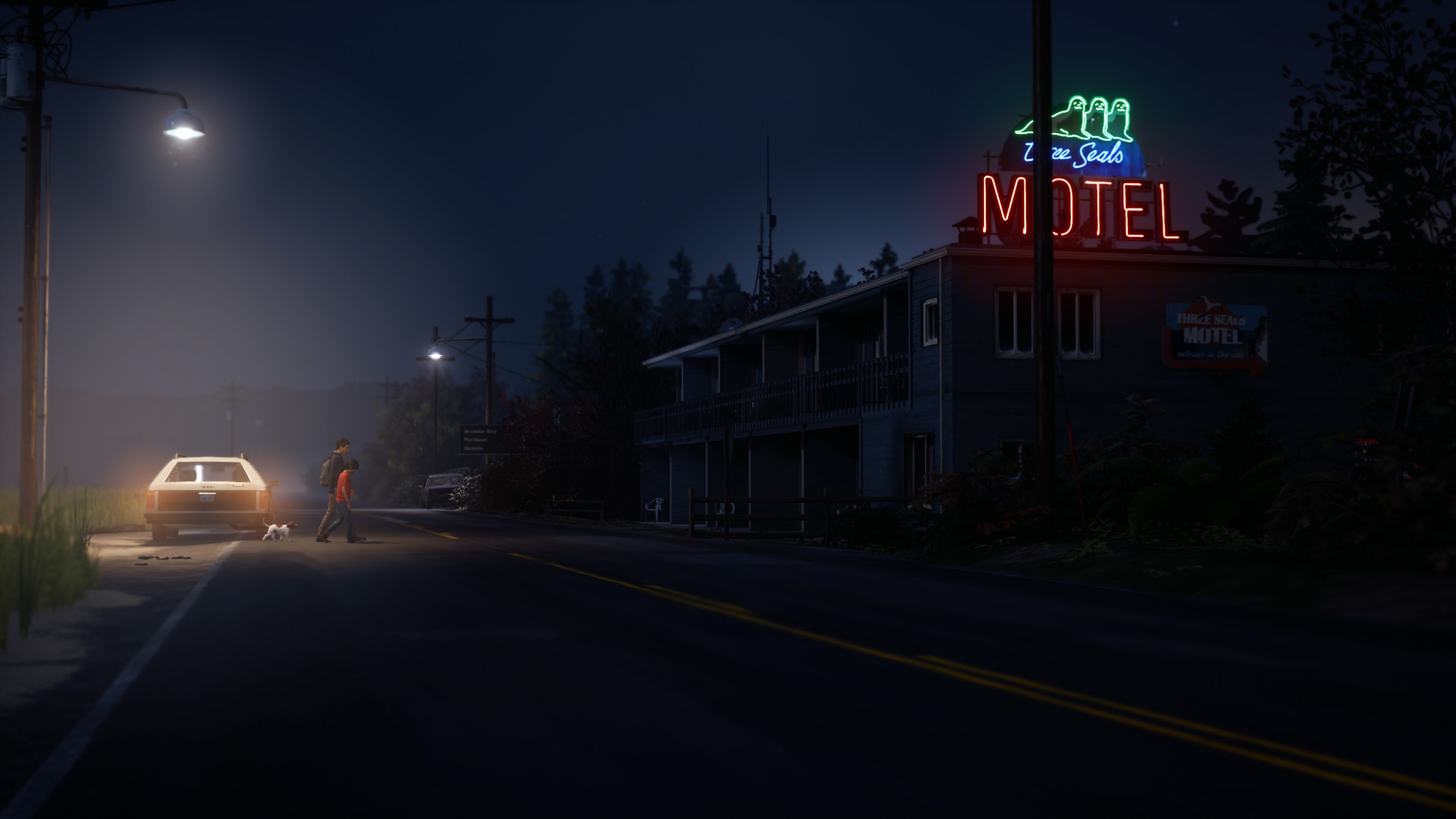 Life is Strange 2 - Complete Season [PC Download]
